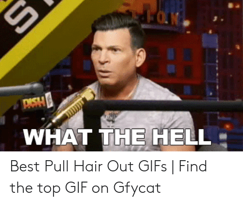 Pulling Hair Out Meme: DASH  WHAT THE HELL Best Pull Hair Out GIFs   Find the top GIF on Gfycat
