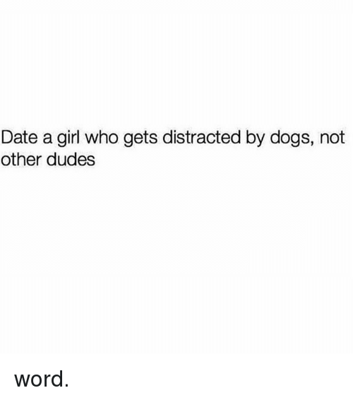 Dogs, Memes, and Date: Date a girl who gets distracted by dogs, not  other dudes word.