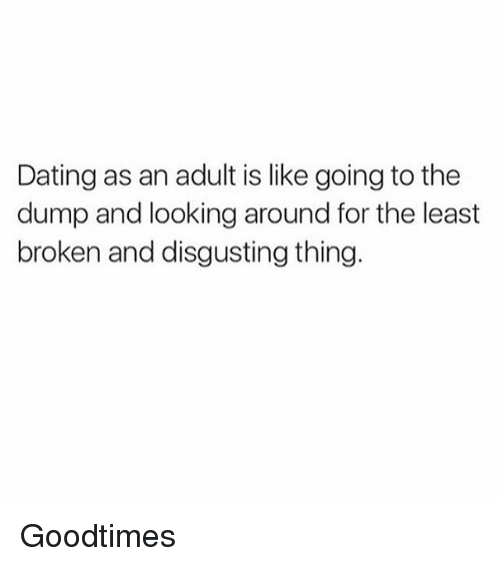 the dump: Dating as an adult is like going to the  dump and looking around for the least  broken and disgusting thing. Goodtimes