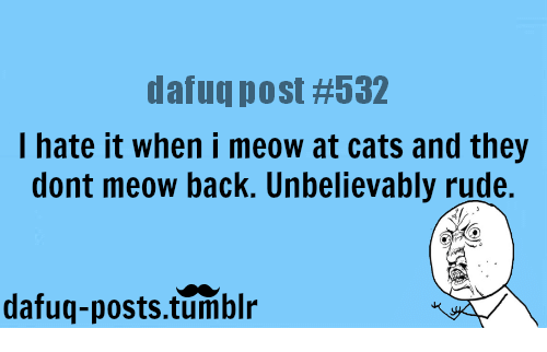 I Hate It When I: datuq post #532  I hate it when i meow at cats and they  dont meow back. Unbelievably rude.  dafuq-posts.tumblr