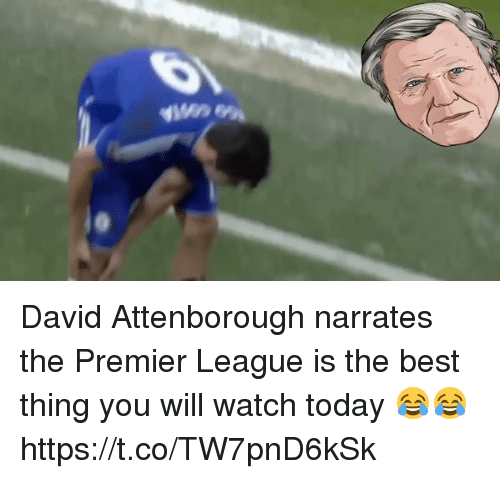 Premier League, Soccer, and Best: David Attenborough narrates the Premier League is the best thing you will watch today 😂😂  https://t.co/TW7pnD6kSk