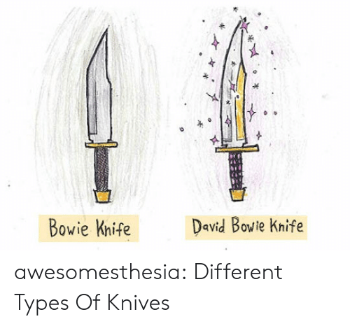 David Bowie: David Bowie Knife  Bowie Knife awesomesthesia:  Different Types Of Knives
