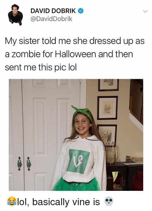 Halloween, Lol, and Memes: DAVID DOBRIK  @DavidDobrik  My sister told me she dressed up as  a zombie for Halloween and then  sent me this pic lol 😂lol, basically vine is 💀