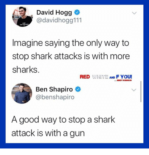hogg: David Hogg  @davidhogg111  Imagine saying the only way to  stop shark attacks is with more  sharks.  RED WEATE AND F YOUI  MINDY ROBINSON  Ben Shapiro  @benshapiro  A good way to stop a shark  attack is with a gun