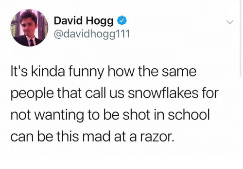 snowflakes: David Hogg o  @davidhogg111  It's kinda funny how the same  people that call us snowflakes for  not wanting to be shot in school  can be this mad at a razor.