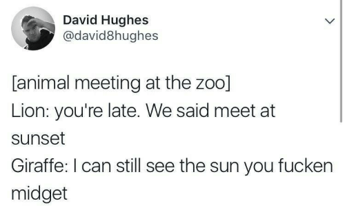 Youre Late: David Hughes  @david8hughes  [animal meeting at the zoo]  Lion: you're late. We said meet at  sunset  Giraffe: I can still see the sun you fucken  midget