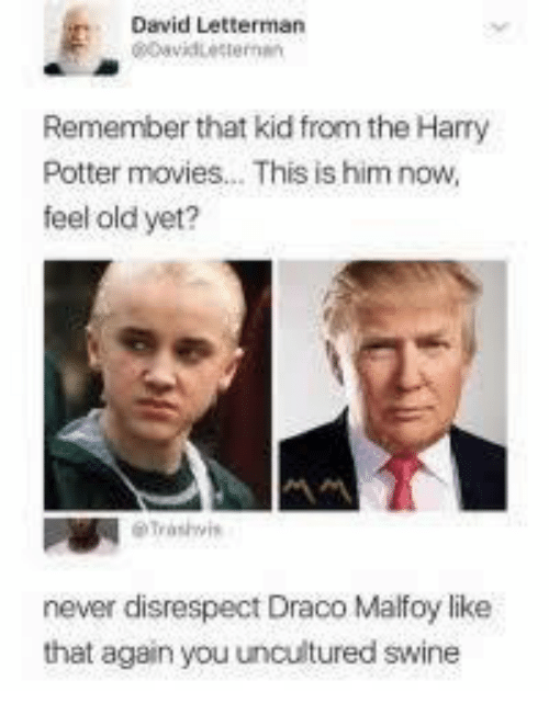 Feel Old Yet: David Letterman  Remember that kid from the Harry  Potter movies... This is him now,  feel old yet?  never disrespect Draco Malfoy like  that again you uncultured swine