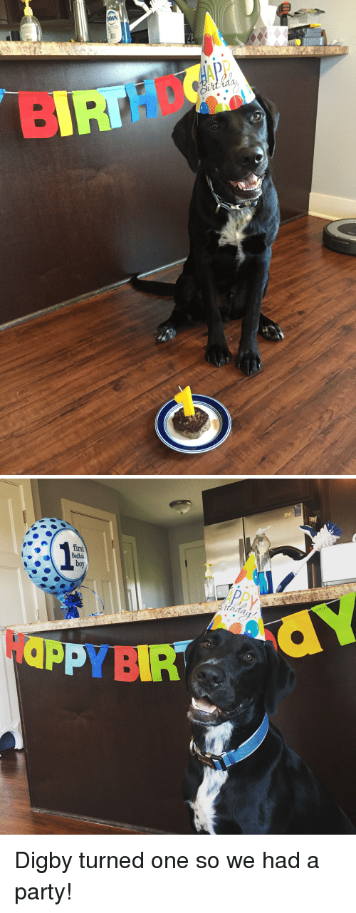 Party, Dawn, and One: DAWN  CLEAN   APPy  Doy  P YBIR Digby turned one so we had a party!