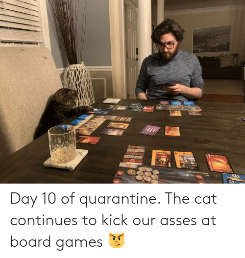 continues: Day 10 of quarantine. The cat continues to kick our asses at board games 😼