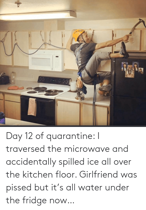 fridge: Day 12 of quarantine: I traversed the microwave and accidentally spilled ice all over the kitchen floor. Girlfriend was pissed but it's all water under the fridge now…