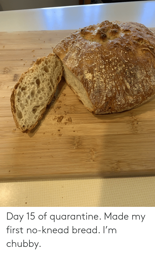 chubby: Day 15 of quarantine. Made my first no-knead bread. I'm chubby.