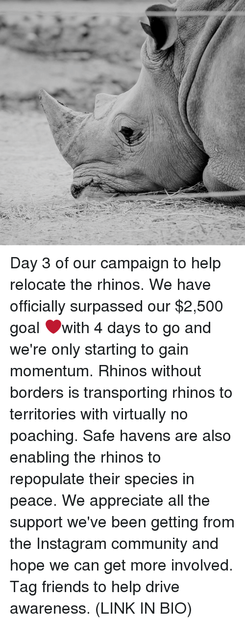 Community, Friends, and Instagram: Day 3 of our campaign to help relocate the rhinos. We have officially surpassed our $2,500 goal ❤️with 4 days to go and we're only starting to gain momentum. Rhinos without borders is transporting rhinos to territories with virtually no poaching. Safe havens are also enabling the rhinos to repopulate their species in peace. We appreciate all the support we've been getting from the Instagram community and hope we can get more involved. Tag friends to help drive awareness. (LINK IN BIO)