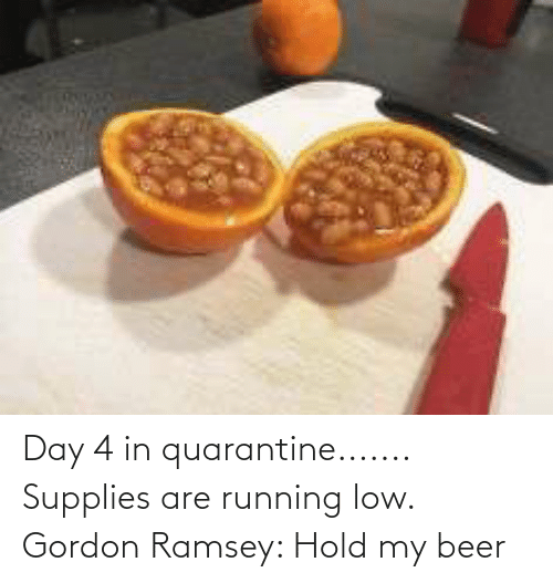 hold my beer: Day 4 in quarantine....... Supplies are running low. Gordon Ramsey: Hold my beer