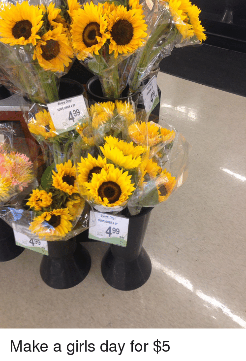 Sunflowering: Day  Every Every Day  SUNFLOWER AST  499  ea Make a girls day for $5