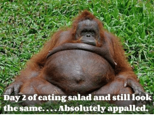 Eating Salad: Day of eating salad and still look  the same... Absolutely appalled.
