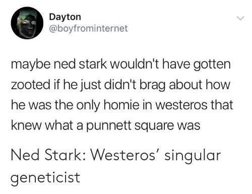 Zooted: Dayton  @boyfrominternet  maybe ned stark wouldn't have gotten  zooted if he just didn't brag about how  he was the only homie in westeros that  knew what a punnett squaree was Ned Stark: Westeros' singular geneticist