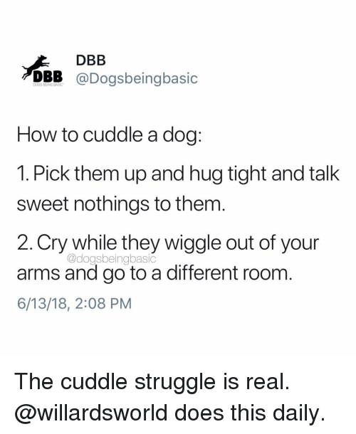 wiggle: DBB  DBB @Dogsbeingbasic  How to cuddle a dog:  1. Pick them up and hug tight and talk  sweet nothings to them  2.Cry while they wiggle out of your  arms and go to a different room  6/13/18, 2:08 PM  @dogsbeingbasic The cuddle struggle is real. @willardsworld does this daily.