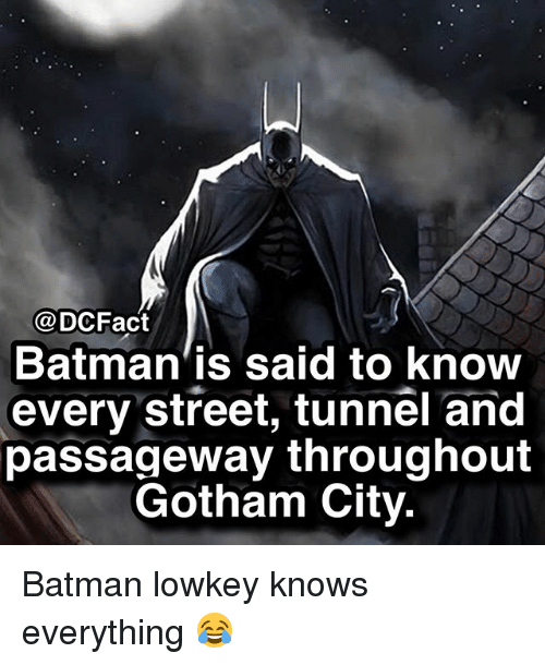 Batman, Memes, and Gotham: @DCFact  Batman'is said to knoOW  every street, tunnel and  passageway throughout  Gotham City. Batman lowkey knows everything 😂