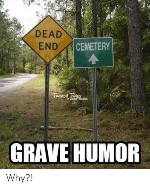 Twies: DEAD  CEMETERY  END  Wisted Twies  GRAVE HUMOR Why?!
