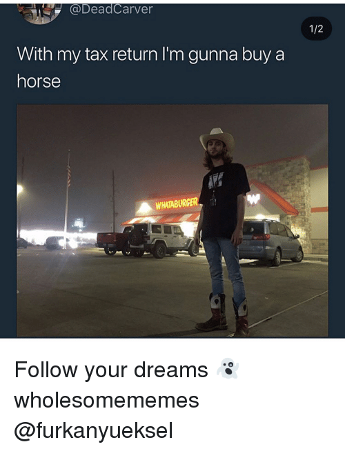 Memes, Whataburger, and Horse: DeadCarver  With my tax return I'm gunna buy a  horse  WHATABURGER Follow your dreams 👻 wholesomememes @furkanyueksel