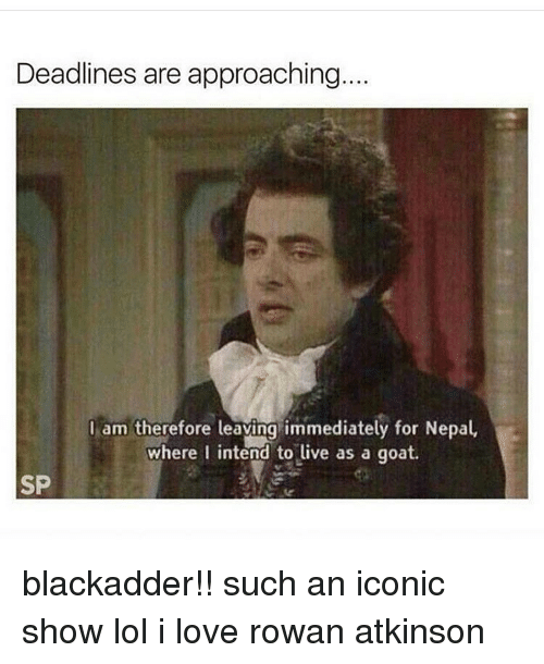 Tumblr, Goat, and Rowan Atkinson: Deadlines are approaching...  I am therefore leaving immediately for Nepal,  where I intend to live as a goat.  SP blackadder!! such an iconic show lol i love rowan atkinson