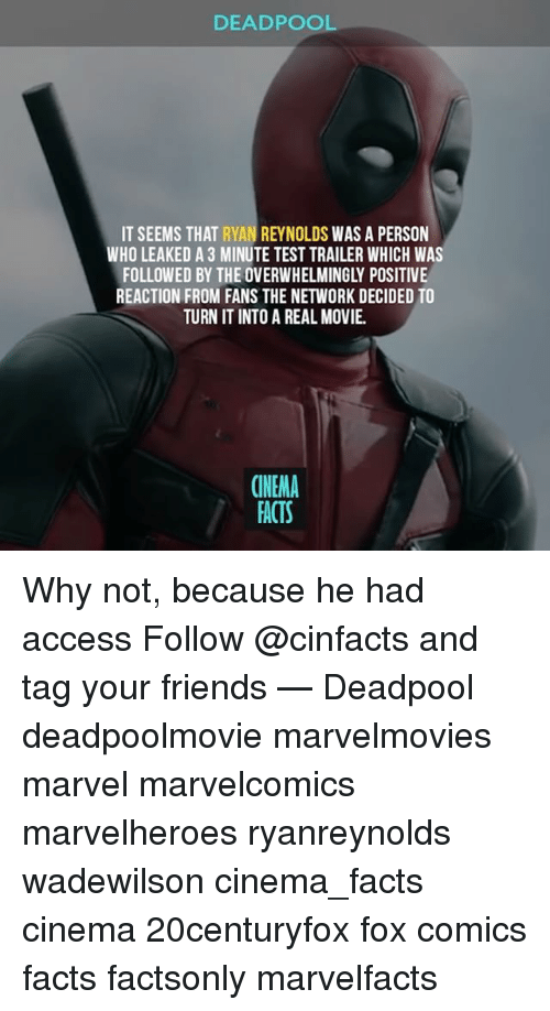 Facts, Friends, and Memes: DEADPOOL  IT SEEMS THAT  RYAN REYNOLDS WAS A PERSON  WHO LEAKED A 3 MINUTE TEST TRAILER WHICH WAS  FOLLOWED BY THE OVERWHELMINGLY POSITIVE  REACTION FROM FANS THE NETWORK DECIDED TO  TURN IT INTO A REAL MOVIE.  CINEMA  FACTS Why not, because he had access Follow @cinfacts and tag your friends — Deadpool deadpoolmovie marvelmovies marvel marvelcomics marvelheroes ryanreynolds wadewilson cinema_facts cinema 20centuryfox fox comics facts factsonly marvelfacts