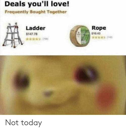 deals: Deals you'll love!  Frequently Bought Together  Rope  $10.43  Ladder  $147.78  *006) Not today