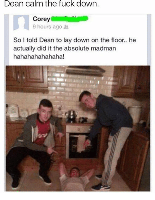 Dank, Fuck, and 🤖: Dean calm the fuck down  Corey  9 hours ago t  So I told Dean to lay down on the floor.. he  actually did it the absolute madman  hahahahahahaha!
