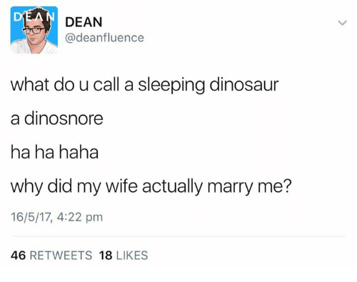 Dinosaur, Memes, and Sleeping: DEAN  @deanfluence  what do u call a sleeping dinosaur  a dinosnore  ha ha haha  why did my wife actually marry me?  16/5/17, 4:22 pm  46  RETWEETS  18  LIKES