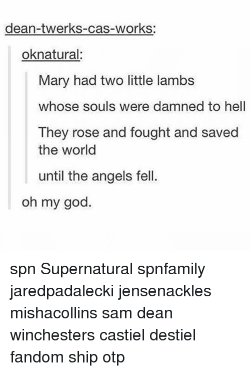 lambs: dean-twerks-cas-works:  oknatural  Mary had two little lambs  whose souls were damned to hell  They rose and fought and saved  the world  until the angels fell.  oh my god spn Supernatural spnfamily jaredpadalecki jensenackles mishacollins sam dean winchesters castiel destiel fandom ship otp