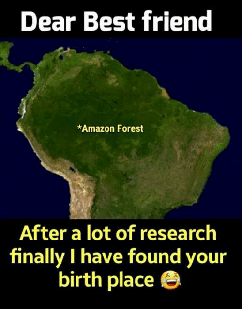 Amazon, Best Friend, and Memes: Dear Best friend  *Amazon Forest  After a lot of research  finally I have found your  birth place e