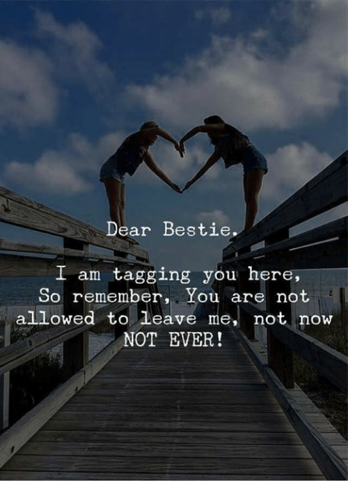 Memes, 🤖, and Remember: Dear Bestie  L am tagging you here,  So remember, You are not  allowed to leave me, not now  NOT EVER!