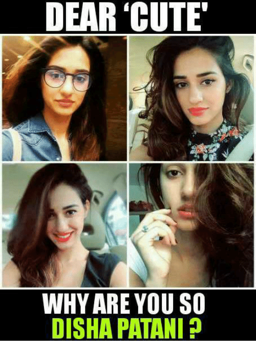 Why You So Cute Meme 25+ Best Memes About M...