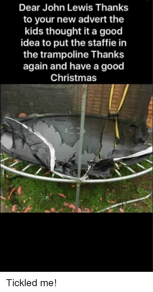 Adverted: Dear John Lewis Thanks  to your new advert the  kids thought it a good  idea to put the staffie in  the trampoline Thanks  again and have a good  Christmas Tickled me!
