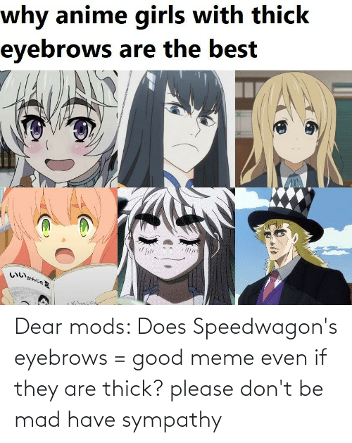 Good Meme: Dear mods: Does Speedwagon's eyebrows = good meme even if they are thick? please don't be mad have sympathy