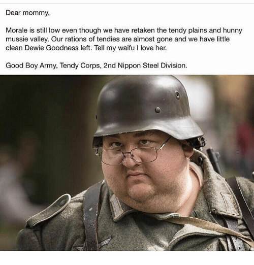 Nippon Steel: Dear mommy,  Morale is still low even though we have retaken the tendy plains and hunny  mussie valley. Our rations of tendies are almost gone and we have little  clean Dewie Goodness left. Tell my waifu I love her.  Good Boy Army, Tendy Corps, 2nd Nippon Steel Division.