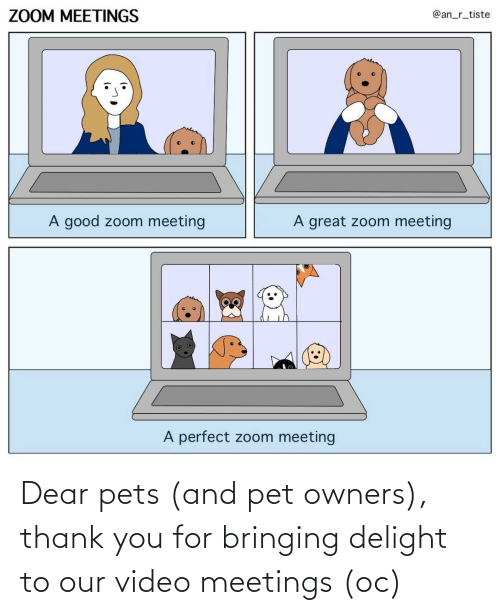 pet: Dear pets (and pet owners), thank you for bringing delight to our video meetings (oc)