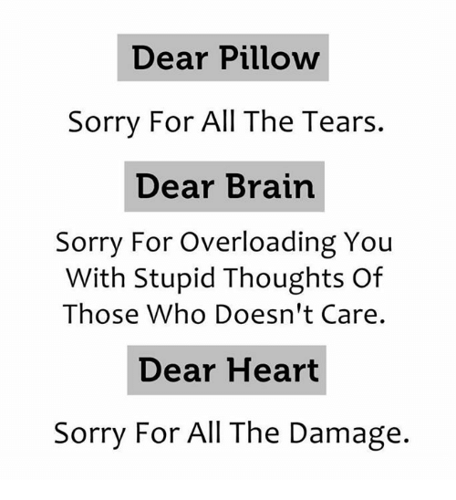 Sorry, Brain, and Heart: Dear Pillow  Sorry For All The Tears.  Dear Brain  Sorry For Overloading You  With Stupid Thoughts of  Those Who Doesn't Care.  Dear Heart  Sorry For All The Damage.