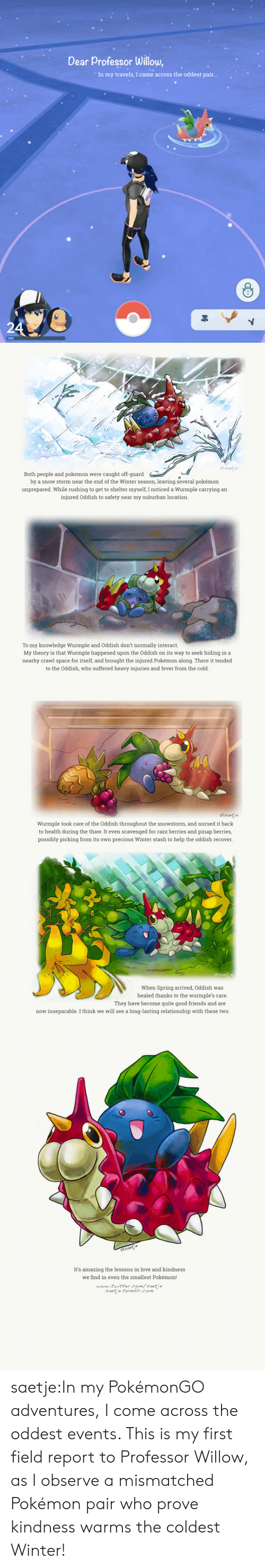 Pokemongo: Dear Professor Willow,  In my travels, I came across the oddest pair..   (s  esntde  Both people and pokemon were caught off-guard  by a snow storm near the end of the Winter season, leaving several pokémon  unprepared. While rushing to get to shelter myself, I noticed a Wurmple carrying an  injured Oddish to safety near my suburban location.  To my knowledge Wurmple and Oddish don't normally interact.  My theory is that Wurmple happened upon the Oddish on its way to seek hiding in a  nearby crawl space for itself, and brought the injured Pokémon along. There it tended  to the Oddish, who suffered heavy injuries and fever from the cold.   Wurmple took care of the Oddish throughout the snowstorm, and nursed it back  to health during the thaw. It even scavenged for razz berries and pinap berries,  possibly picking from its own precious Winter stash to help the oddish recover.  When Spring arrived, Oddish was  healed thanks to the wurmple's care.  They have become quite good friends and are  now inseparable. I think we will see a long-lasting relationship with these two.   It's amazing the lessons in love and kindnes  we find in even the smallest Pokémon!  www tuittercom/santie  saetie tumblr.com saetje:In my PokémonGO adventures, I come across the oddest events. This is my first field report to Professor Willow, as I observe a mismatched Pokémon pair who prove kindness warms the coldest Winter!