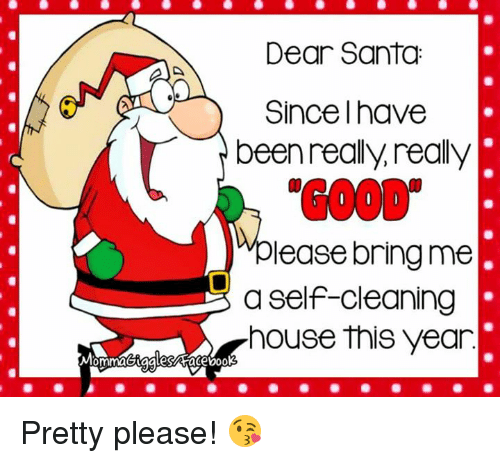 Cleaning House: Dear Santa  Since Ihave  been really really  lease bring me  a self-cleaning  house this year Pretty please! 😘