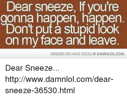 Memes, 🤖, and Html: Dear sneeze, you're  onna happen, happen.  on't put stupid look  on my face and leave.  GINGERS DO HAVE SOULS DAMNLOLCOM Dear Sneeze... http://www.damnlol.com/dear-sneeze-36530.html