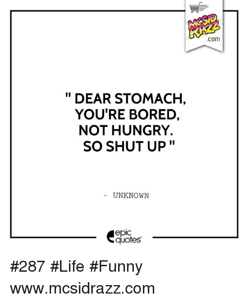 Life Funny: DEAR STOMACH,  YOU'RE BORED.  NOT HUNGRY.  II  SO SHUT UP  UNKNOWN  quotes  COm #287 #Life #Funny www.mcsidrazz.com