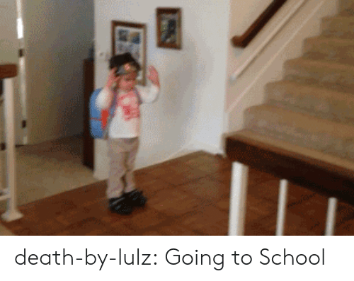 lulz: death-by-lulz: Going to School