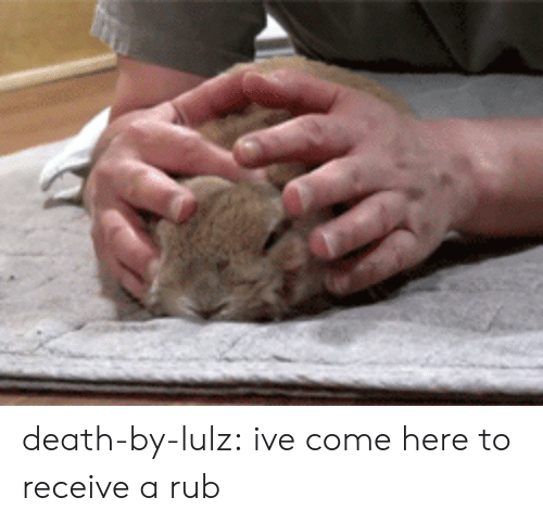 lulz: death-by-lulz:  ive come here to receive a rub