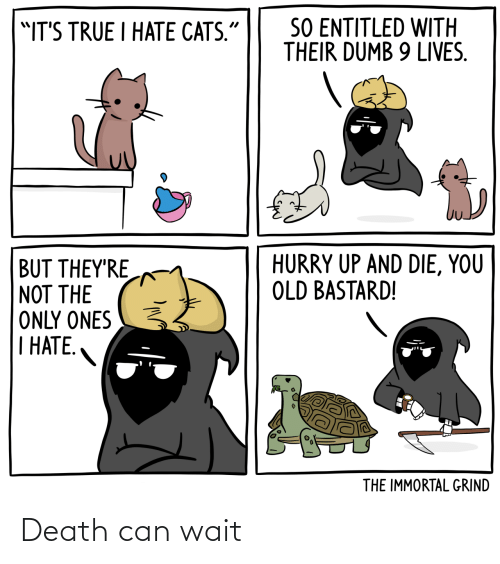 Death: Death can wait