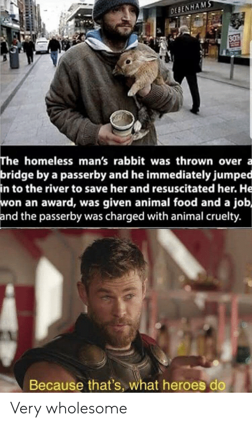 Was Given: DEBENHAMS  30  The homeless man's rabbit was thrown over  bridge by a passerby and he immediately jumped  in to the river to save her and resuscitated her. He  won an award, was given animal food and a job,  and the passerby was charged with animal cruelty.  a  Because that's, what heroes do Very wholesome