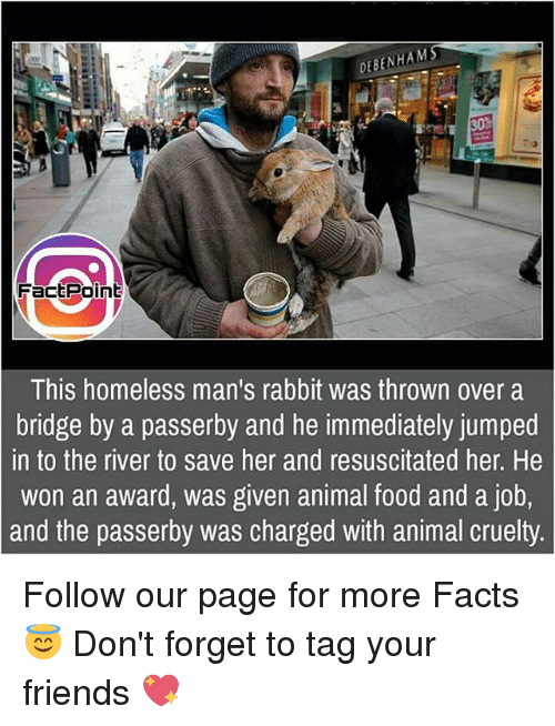 Memes, 🤖, and Page: DEBENHAMS  Fac Point  This homeless man's rabbit was thrown over a  bridge by a passerby and he immediately jumped  n to the river to save her and resuscitated her. He  won an award, was given animal food and a job,  and the passerby was charged with animal cruelty Follow our page for more Facts 😇 Don't forget to tag your friends 💖