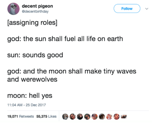 Dank, God, and Life: decent pigeon  @decentbirthday  Follow  [assigning roles]  god: the sun shall fuel all life on earth  sun: sounds good  god: and the moon shall make tiny waves  and werewolves  moon: hell yes  1:04 AM-25 Dec 2017  19,071 Retweets 55,375 Likes  ●GGO. ●むSie