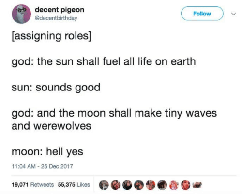 Waves: decent pigeon  @decentbirthday  Follow  [assigning roles]  god: the sun shall fuel all life on earth  sun: sounds good  god: and the moon shall make tiny waves  and werewolves  moon: hell yes  11:04 AM-25 Dec 2017  19,071 Retweets 55,375 Likes