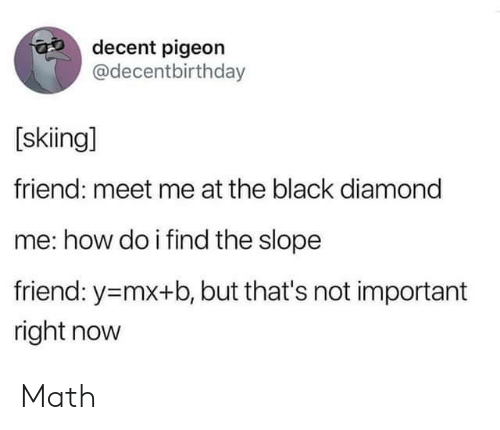 skiing: decent pigeon  @decentbirthday  [skiing]  friend: meet me at the black diamond  me: how do i find the slope  friend: y-mx+b, but that's not important  right now Math